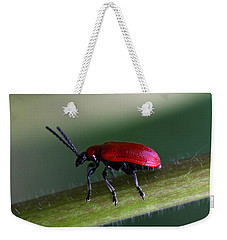 Weekender Tote Bag featuring the photograph Under Way by Annie Snel