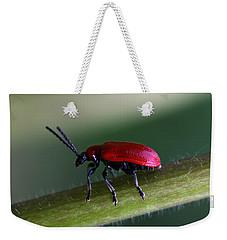 Under Way Weekender Tote Bag by Annie Snel