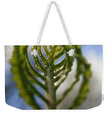 Unwrapped Weekender Tote Bag