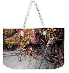 Up And Down Lobster Weekender Tote Bag