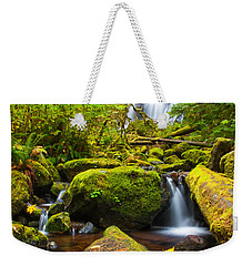 Upper Kentucky Falls - Autumn Weekender Tote Bag by Patricia Davidson