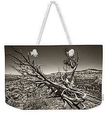 Uprooted - Bryce Canyon Sepia Weekender Tote Bag by Tammy Wetzel