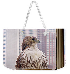 Urban Red-tailed Hawk Weekender Tote Bag