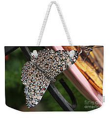 Weekender Tote Bag featuring the photograph Variable Craker Butterfly #2 by Judy Whitton