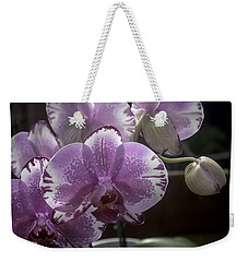 Variegated Fuscia And White Orchid Weekender Tote Bag by Lynn Palmer