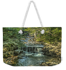 Weekender Tote Bag featuring the photograph Vaughan Woods Stream by Jane Luxton