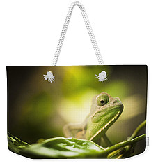 Veiled Chameleon Is Watching You Weekender Tote Bag