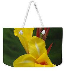 Velvety Yellow Iris  Weekender Tote Bag by Brenda Brown