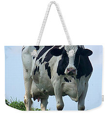 Weekender Tote Bag featuring the photograph Vermont Dairy Cow by Eunice Miller