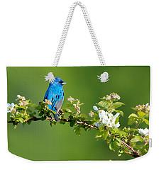 Vibrance Of Spring Weekender Tote Bag