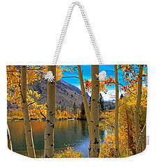 View Through The Aspens Weekender Tote Bag by Donna Kennedy