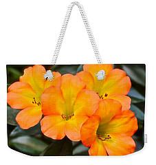 Vireya Rhododendron Weekender Tote Bag by Venetia Featherstone-Witty