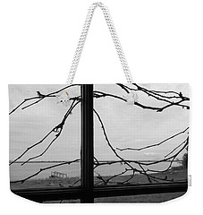 Weekender Tote Bag featuring the photograph Virginia Creeper  by Cheryl Hoyle