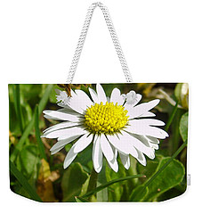 Visiting Miss Daisy Weekender Tote Bag by Nina Ficur Feenan