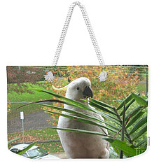 Weekender Tote Bag featuring the photograph Visitor On My Balcony by Leanne Seymour
