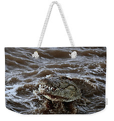 Voracious Crocodile In Water Weekender Tote Bag
