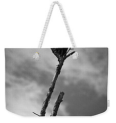 Weekender Tote Bag featuring the photograph Vulture Silhouette by Bradley R Youngberg