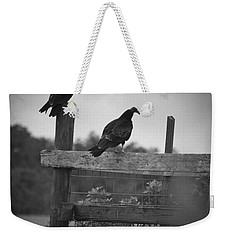 Weekender Tote Bag featuring the photograph Vultures On Fence by Bradley R Youngberg