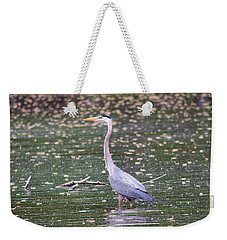 Weekender Tote Bag featuring the photograph Wading Crane by Susan  McMenamin