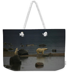 Weekender Tote Bag featuring the photograph Waiting For Cub Number 2 by Ben Shields