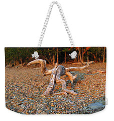 Walking On The Beach Weekender Tote Bag by Leone Lund