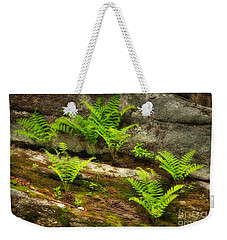 Weekender Tote Bag featuring the photograph Ferns by Alana Ranney