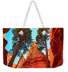 Wall Street Weekender Tote Bag by Robert Bales