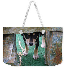 Wannabe Sled Dog In The Yukon Weekender Tote Bag
