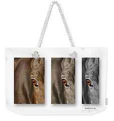 Watchful Triptych Weekender Tote Bag by Michelle Twohig