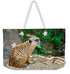 Watchful Meerkat Weekender Tote Bag