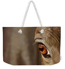 Watchful Weekender Tote Bag by Michelle Twohig