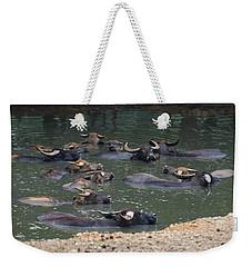Water Buffalo Weekender Tote Bag by Chris Flees