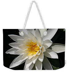 Weekender Tote Bag featuring the photograph Water Lily  by Denyse Duhaime