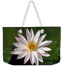 Weekender Tote Bag featuring the photograph Water Lily by Sergey Lukashin