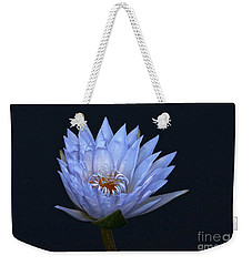 Water Lily Shades Of Blue And Lavender Weekender Tote Bag