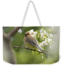 Waxwing In A Dream Weekender Tote Bag