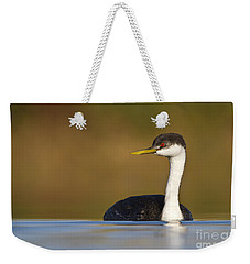 Weekender Tote Bag featuring the photograph Western Grebe On The Lake by Bryan Keil