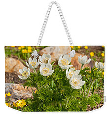 Weekender Tote Bag featuring the photograph Western Pasqueflower And Buttercups Blooming In A Meadow by Jeff Goulden