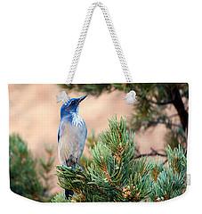 Western Scrub Jay Weekender Tote Bag