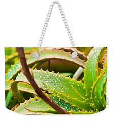 After The Rain Weekender Tote Bag by Melinda Ledsome