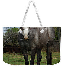 Weekender Tote Bag featuring the photograph What Are You Afraid Of by Peter Piatt