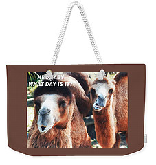 Camel What Day Is It? Weekender Tote Bag