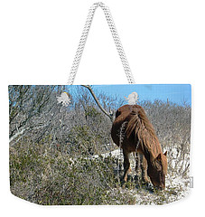 What Do I See Here? Weekender Tote Bag by Photographic Arts And Design Studio