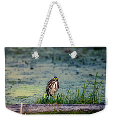 Weekender Tote Bag featuring the photograph Whatcou Lookin' At? by David Porteus