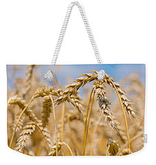 Wheat Weekender Tote Bag by Cheryl Baxter