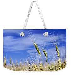 Weekender Tote Bag featuring the photograph Wheat Trio by Keith Armstrong