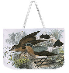 Wheatear Weekender Tote Bag by English School