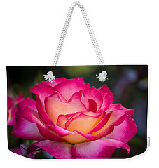 Weekender Tote Bag featuring the photograph When It's Love by Patricia Babbitt