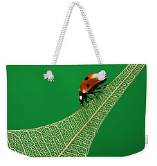 Where Have All The Green Leaves Gone? Weekender Tote Bag by William Lee