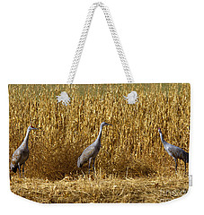 Where Is The Corn Weekender Tote Bag